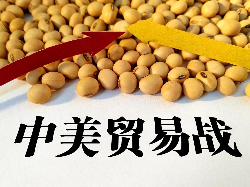 美商务部长展望贸易战解决进程 大豆成催化剂(图)