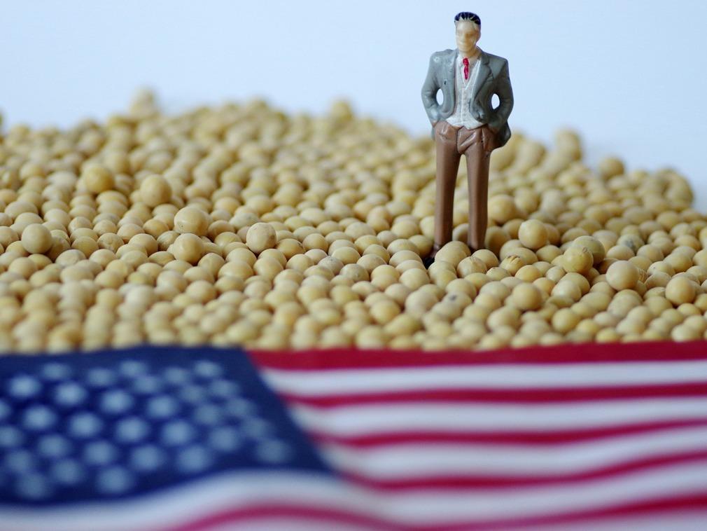 全球变暖大豆增产 厄尔尼诺扰乱中美贸易战节奏